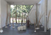 Gelassenheit, 2013